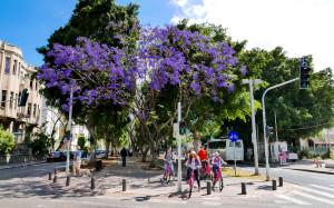 BIKINI'S: Rothschild Boulevard Tel Aviv op sabbat.